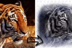 From Full Colour Photo to Pencil Sketch